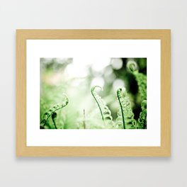 Unfurl Framed Art Print