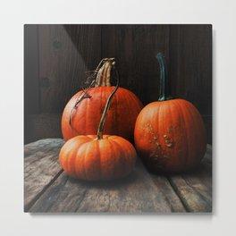 Three Pumpkins Metal Print