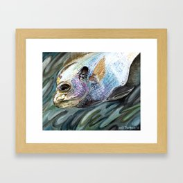 """Bluegill"" Framed Art Print"