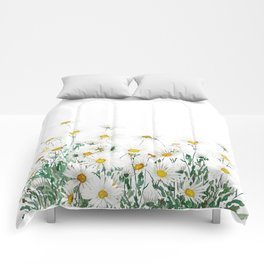 white margaret daisy horizontal watercolor painting Comforters