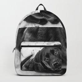 Skye Backpack