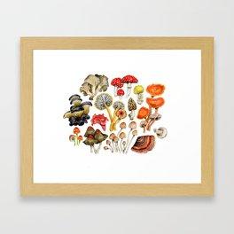 Mushroom Patterns Framed Art Print