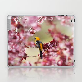 Oriole in Plum Tree Laptop & iPad Skin
