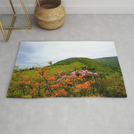 Image USA Carolina Roan Mountain Rhododendrons Nature Hill park Rhododendron Bush Parks Shrubs Rug