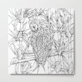 Nicobar pigeon in line Metal Print