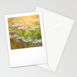Sunset Hydrangea Stationery Cards