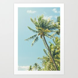 Kenolio Beach Hawaiian Coconut Palm Trees Kīhei Maui Hawaii Art Print