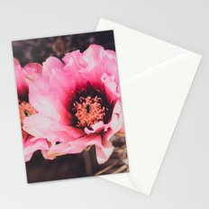 Faded Desert Blooms Stationery Cards