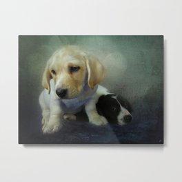 Buddies - 2 Puppies Metal Print