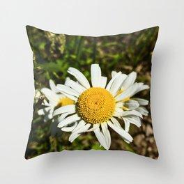 Daisy, Daisy Throw Pillow