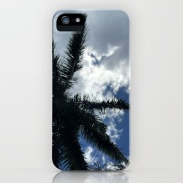 Tropical Coconut Palm Tree in Carribean Blue Sky iPhone Case