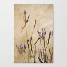 Stick Flowers Canvas Print