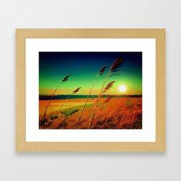 Jones Beach Framed Art Print
