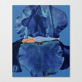 Beauty Sleep Canvas Print