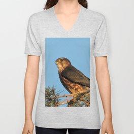 Cooper's Hawk in Evening Light Unisex V-Neck