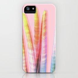 RAINBOW STUKYI iPhone Case