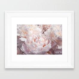 Floral Photography   Peony Pink Cluster   Flowers   Botanical   Plant Framed Art Print