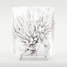 Vintage Pair of King Proteas Pencil Illustration Shower Curtain