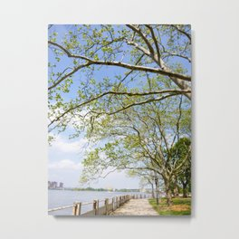 Roosevelt Island Walk Metal Print