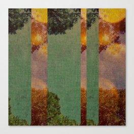 a slice of sunshine Canvas Print