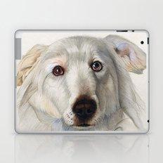 Maremma dog Laptop & iPad Skin