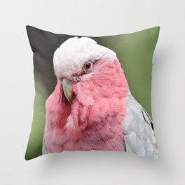 Beautiful Cockatoo Throw Pillow