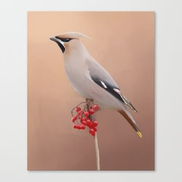 Waxwing with Berries Canvas Print