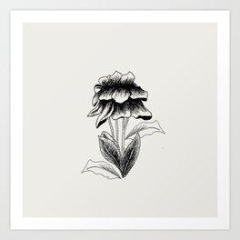 Flower #1 Art Print