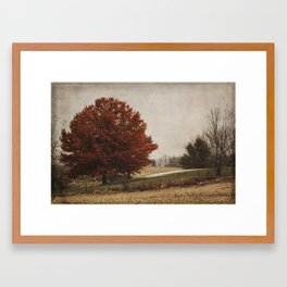 The Royal Oak II Framed Art Print