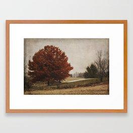 The Royal Oak II Framed Art Print