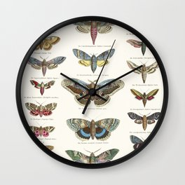 Vintage Moth Chart Wall Clock