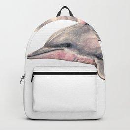Tucuxi (Sotalia fluviatilis) Backpack