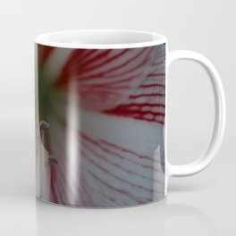 Botanical Gardens - Red Orchid #175 Coffee Mug