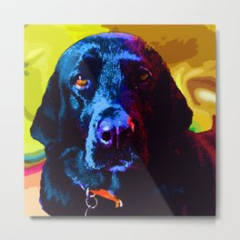 Soulful eyes Metal Print