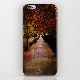 Autumn Beauty by Vince Bongiovanni iPhone Skin