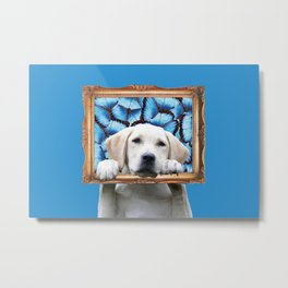 Retriever with Frame and Morpho Butterfies Metal Print