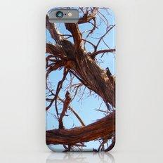 Juniper Slim Case iPhone 6s
