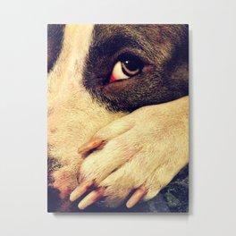 Pitbull profile Metal Print