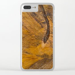 Cross-section Clear iPhone Case