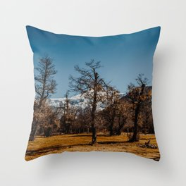 View from the base of Cerro Tronador in San Carlos de Bariloche Throw Pillow