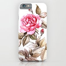 Watercolor rose Slim Case iPhone 6s