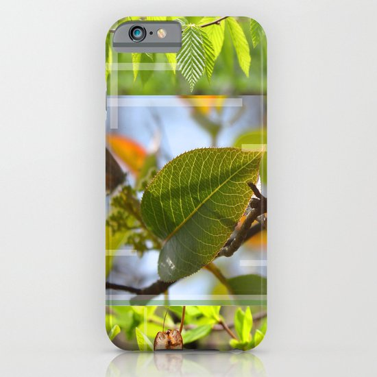 The Leaf And The Distant Butterfly  iPhone & iPod Case