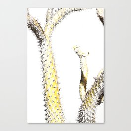 Cactus Cut 01 Canvas Print