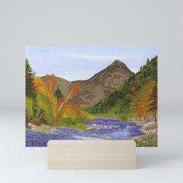 Ausable River Adirondack Park, NY Mini Art Print