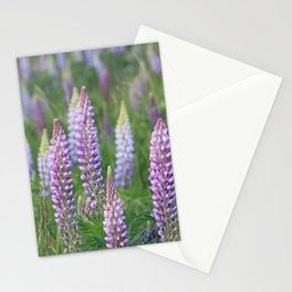 The Wild Purple Lupine Field on Fidalgo Island Stationery Cards
