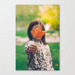 Girl holding a dry leaf Canvas Print