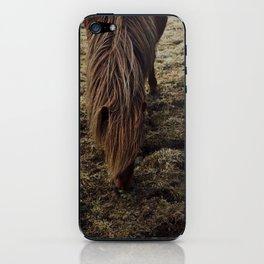 Horses in Iceland iPhone Skin