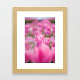 JW Photography Framed Art Print