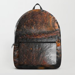 Autumn landscape in the forest Backpack
