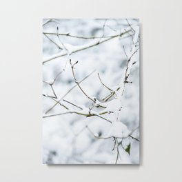 Winter forest covered with snow | fine art photo print in the netherlands | nature and travel photograpy Metal Print